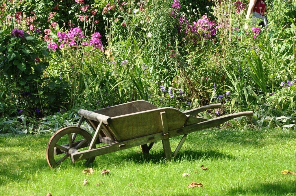 Narzędzia ogrodowe, które musisz mieć opiekując się ogrodem!