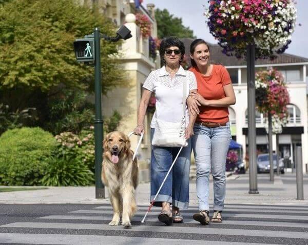 Związki, stowarzyszenia, instytucje na rzecz osób niewidomych