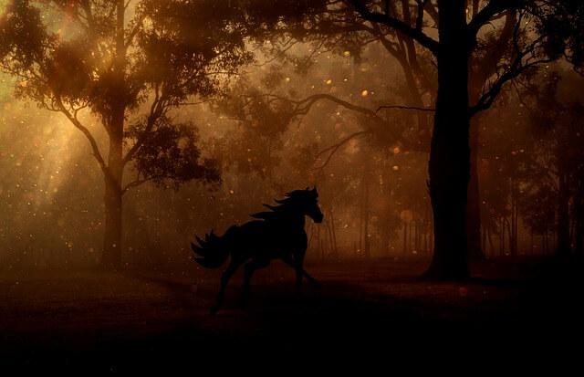 Jakie książki fantasy warto przeczytać – 5 przykładów książkowych serii