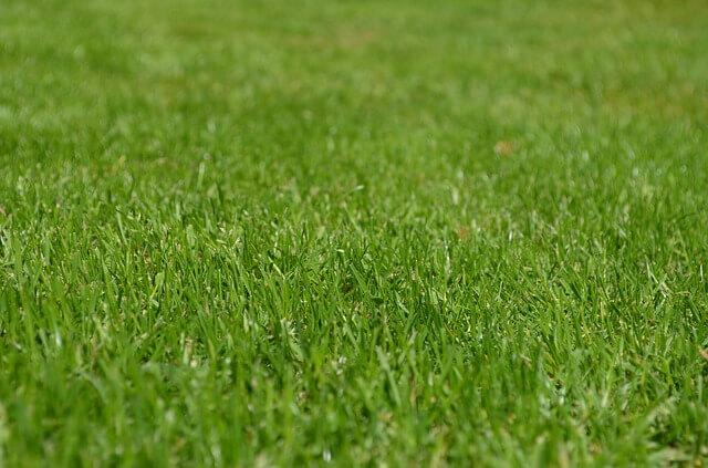 Producenci kratek trawnikowych, drogowych – TOP 5