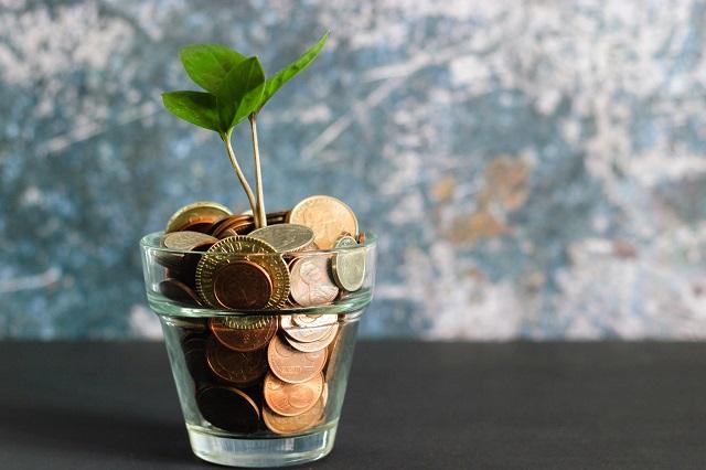 Roslina wyrastająca ze szklanki monet