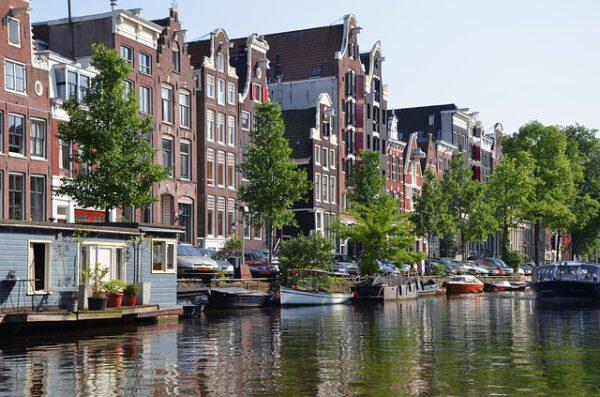 Gdzie szukać aktualnych wydarzeń z Holandii? Lista serwisów informacyjnych dla Polaków w Holandii